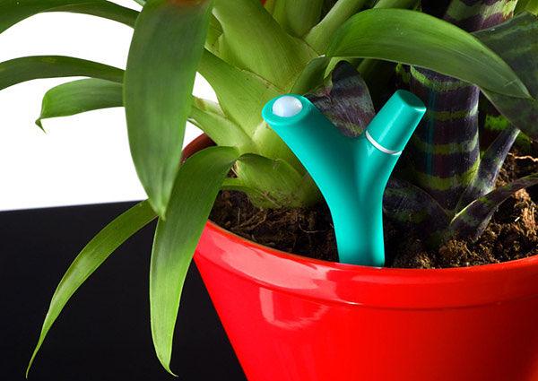 Parrot Flower Power bluetooth